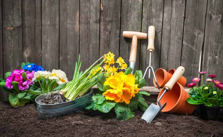 Organize-Your-Yard-Tools