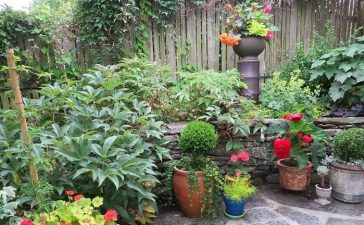 Fix An Ugly Container Garden