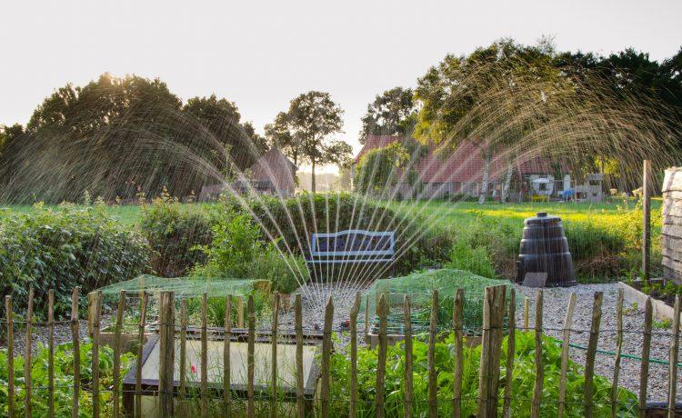 garden fence repairs
